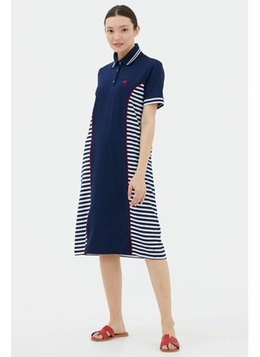 Sementa Polo Yaka Çizgi Kombinli Marine Elbise - Lacivert Lacivert